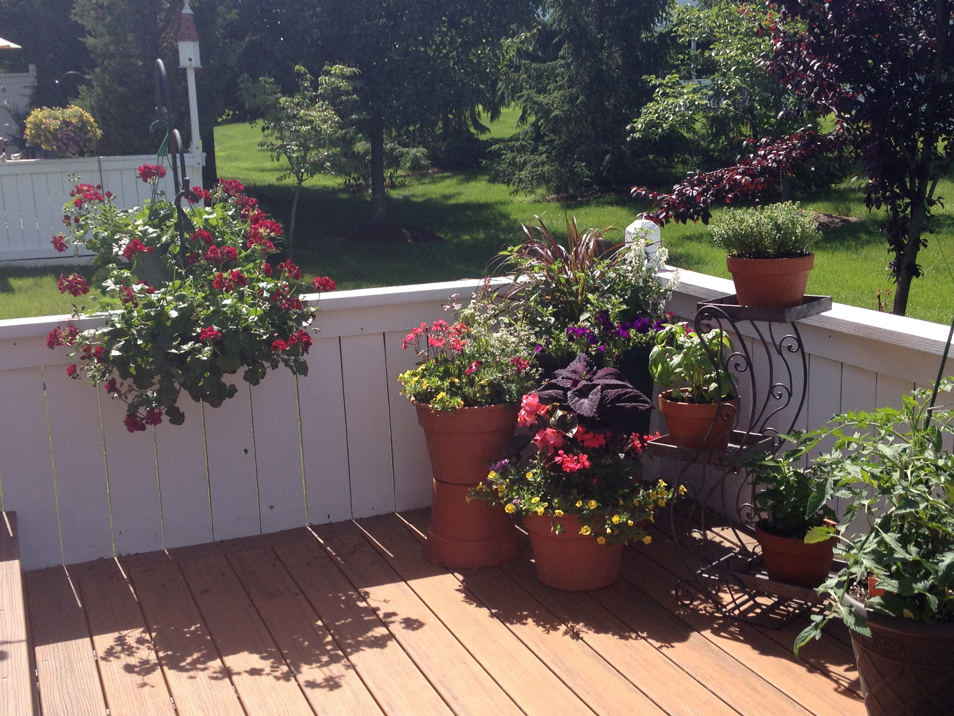 Before and after deck redesign with flowering and edible for Garden decking before and after